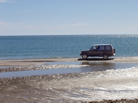 Fred driving on beach